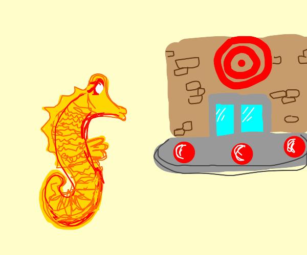 seahorse visits target