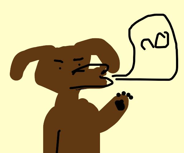 Pet Object