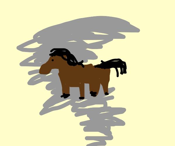 Horse in a tornado