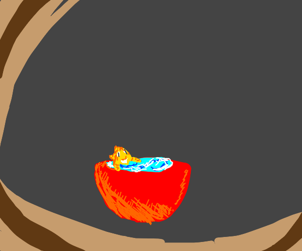 Goldfish in a red bowl