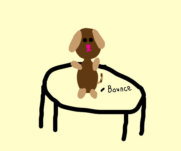 brown dog bouncing on a trampoline