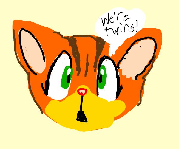 Furries' eyes are twins