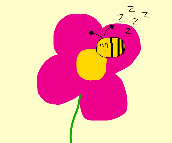 a bee asleep on a flower