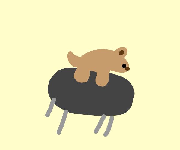 Doggy on a Table
