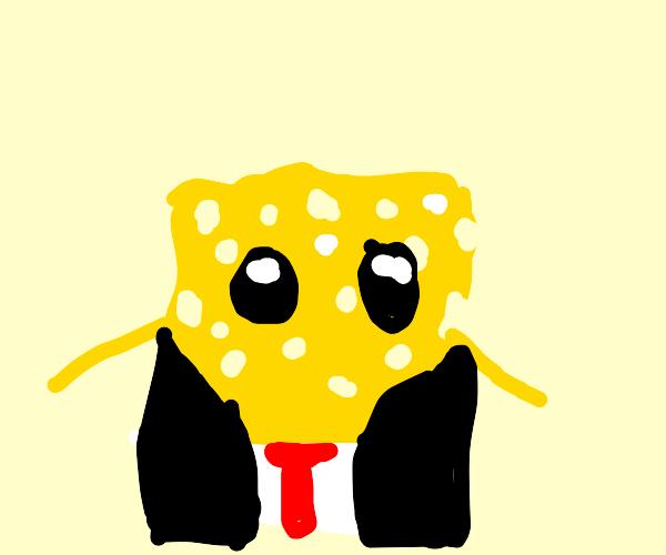 Sponge wearing a Coat