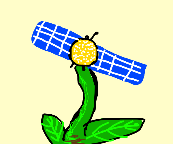 satellite flower