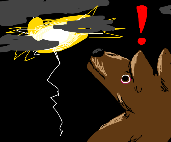 dogs alarmed by lighning