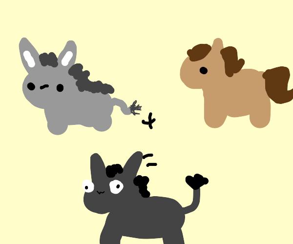 Donkey + Horse = Mule