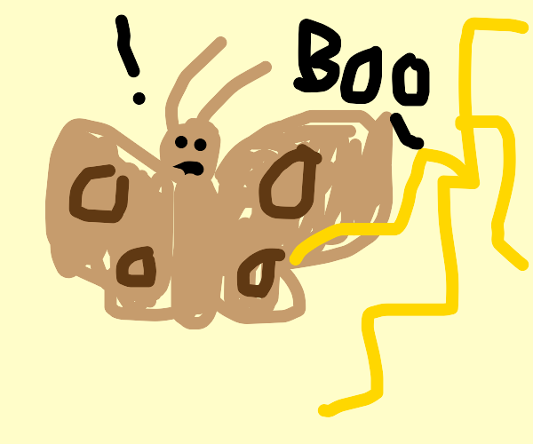 moth pt 2, the electric boogaloo
