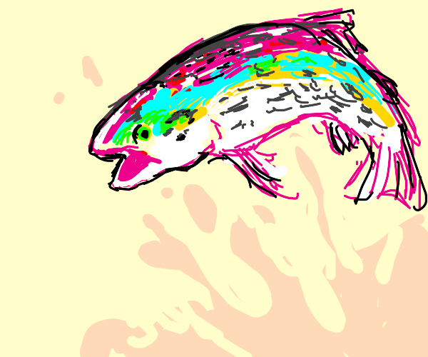 a rainbow fish