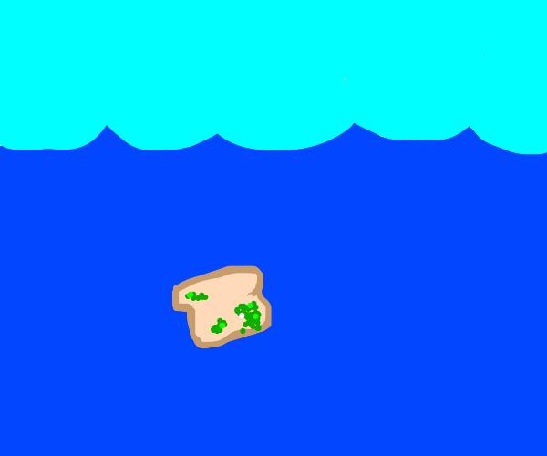 moldy bread in the ocean