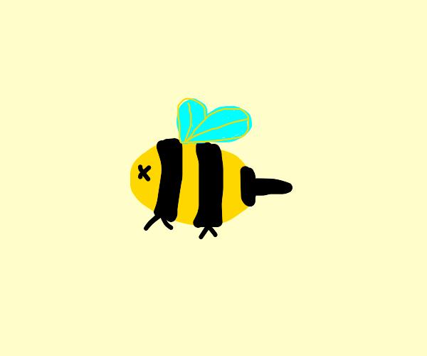 dead bee?