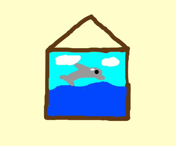 framed picture of a dolphin