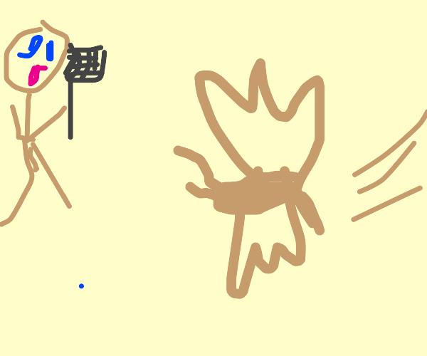 Golden Mosquito