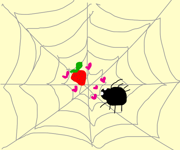 Spider wants a strawberry in its web