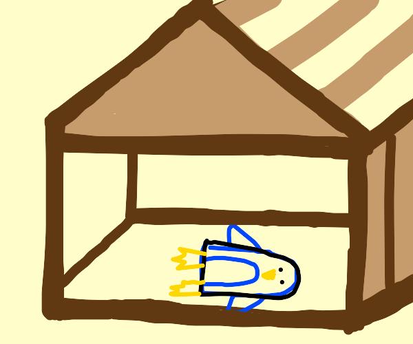 bird shaped like a sled inside a house