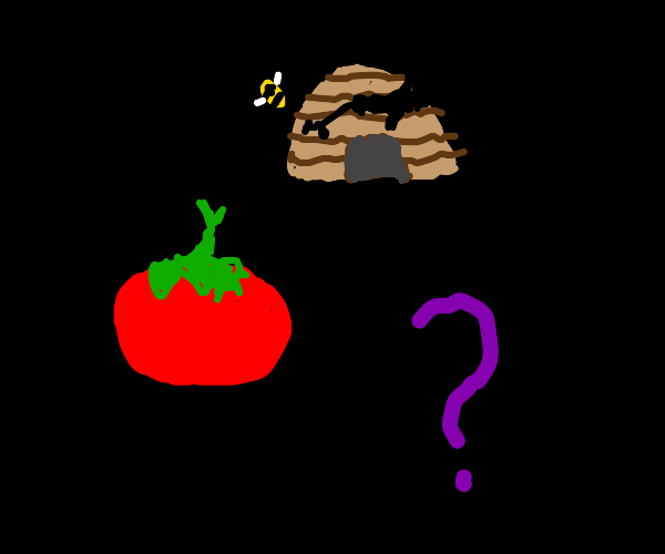 Tomato, broken beehive, and question mark