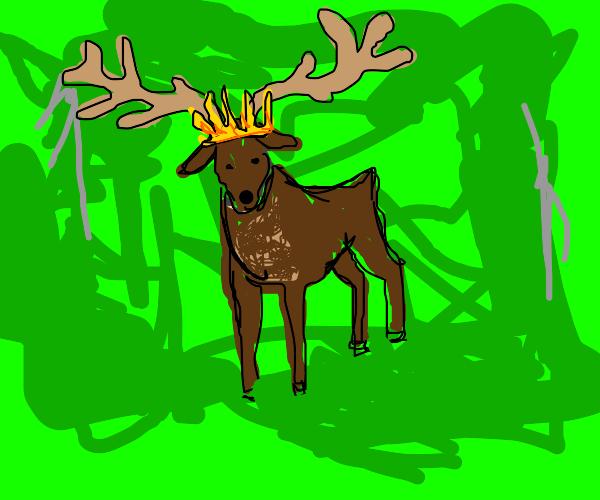 King Elk with Golden Crown
