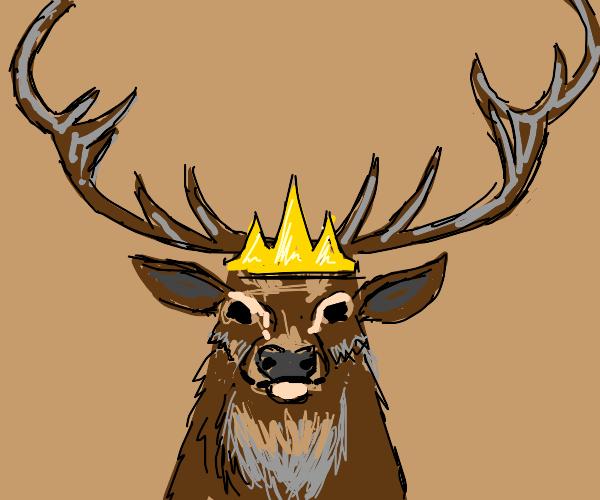 Ah, The King Of The Deers.