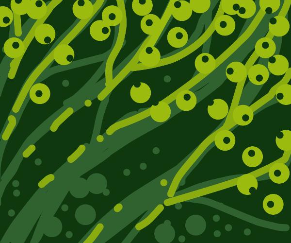 Glowing eyes peeking through seaweed