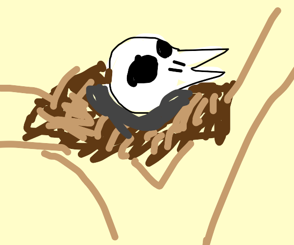 Skull in a Nest