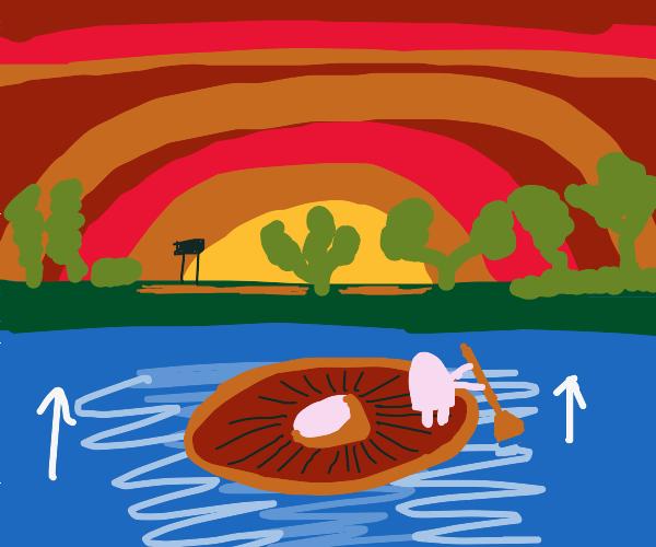 mushroom boat rides to the sunset