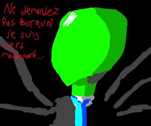 Green slender speaks french