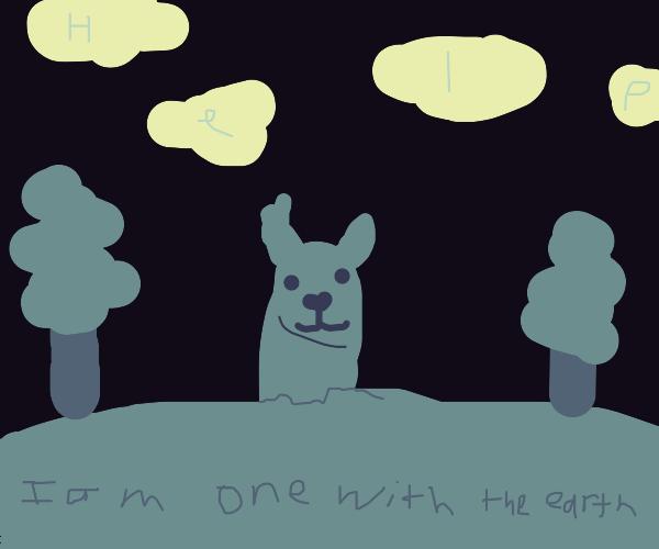 Earthy Llama