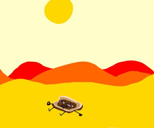 Bread toasting in the desert sun