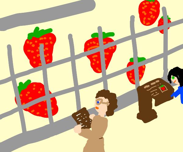Strawberry Zoologist