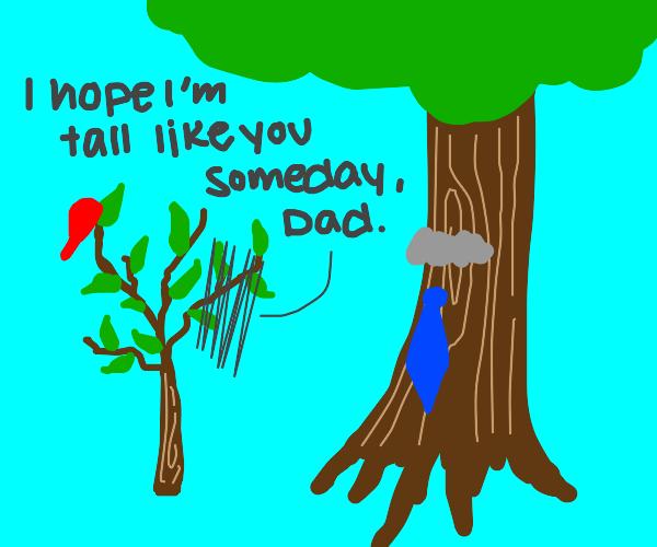 Papa tree be vary tall