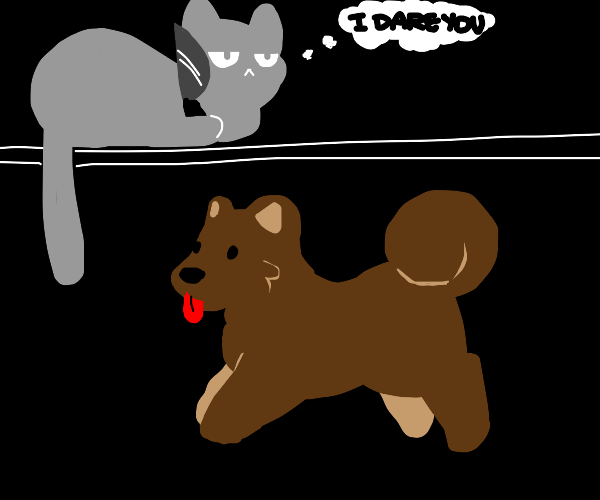 angry gray cat vs weird brown dog