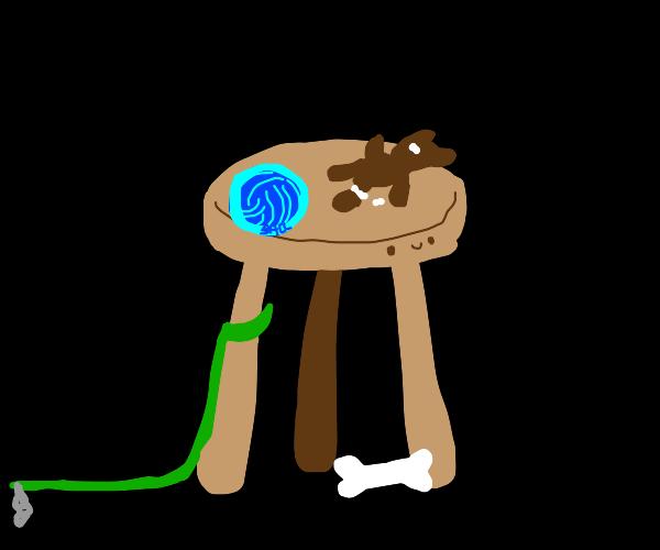 Happy Bar stool with dog toys