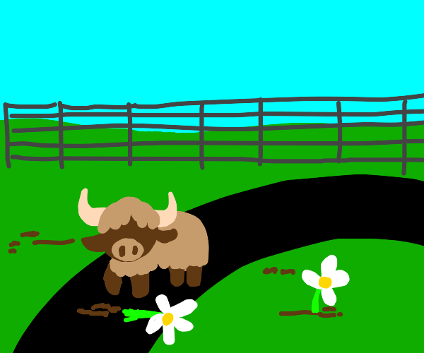 Buffalo digging into the Tracks