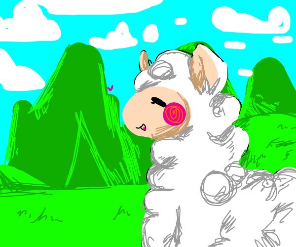 Alpaca walking through a valley
