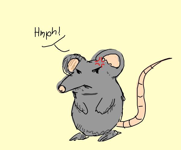 angy rat