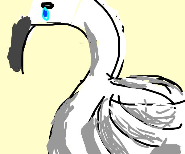 Fat Swan