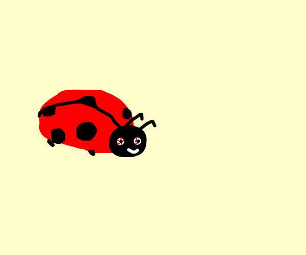 Pretty sure that lady bug is high.
