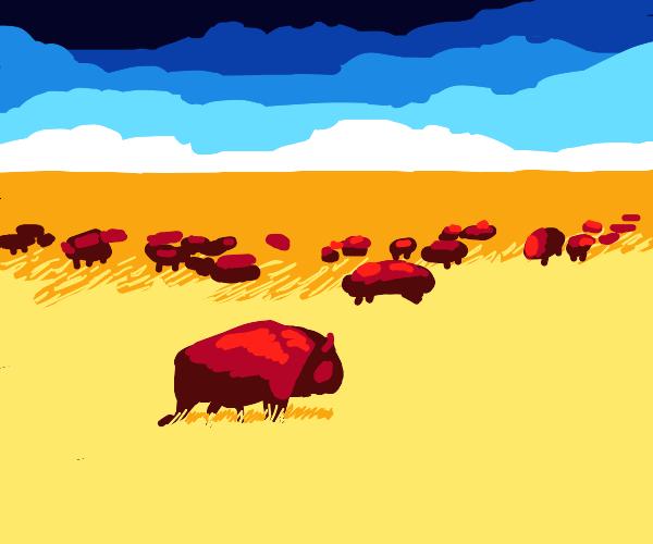 Herd in the valley