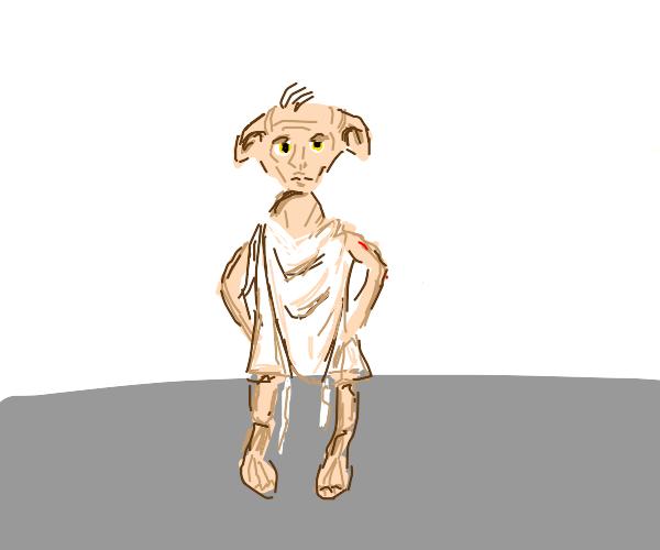 Dobby house elf (still enslaved)