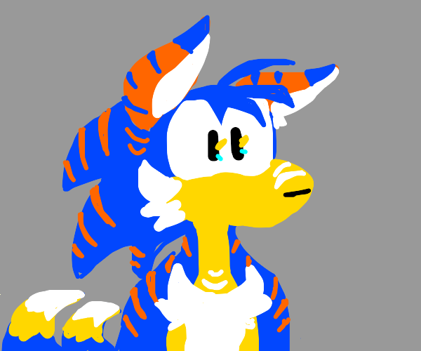 Tails and Sonic have a child