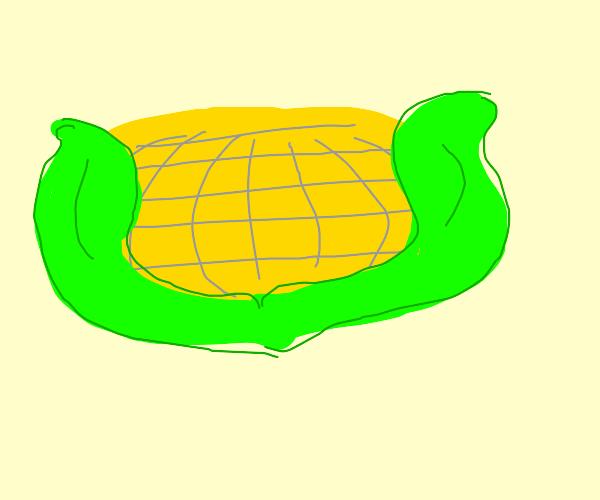 Wide Corn