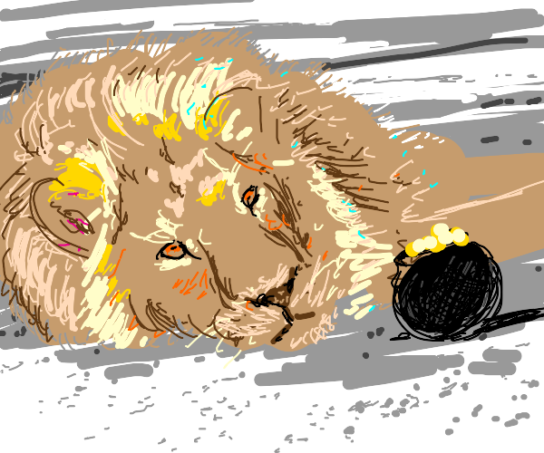 Lion laying by a pot of gold