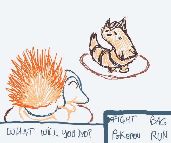 Cyndaquil VS Furret, FIGHT!