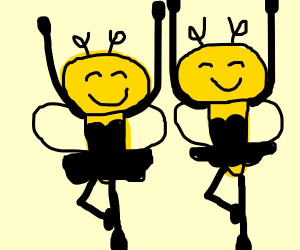 Bee ballerinas