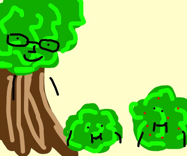 Tree single father