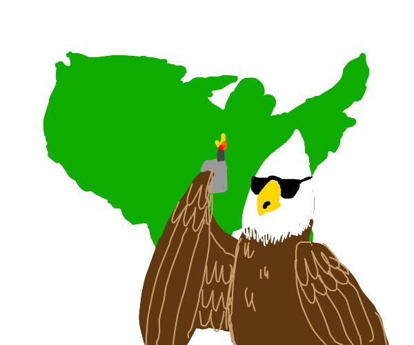 dank bald eagle roasting america
