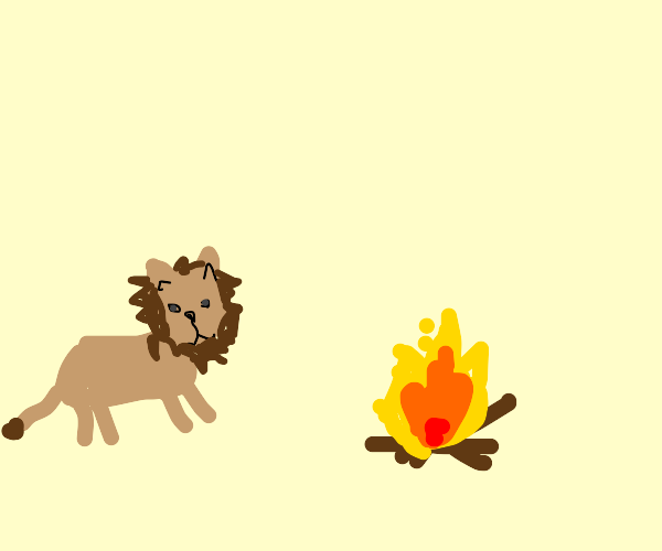 cute lion cub stands in front of fire