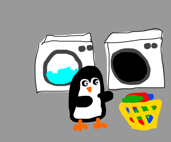 Penguin drying its laundry
