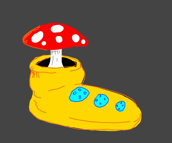 Toadstool in a clown shoe
